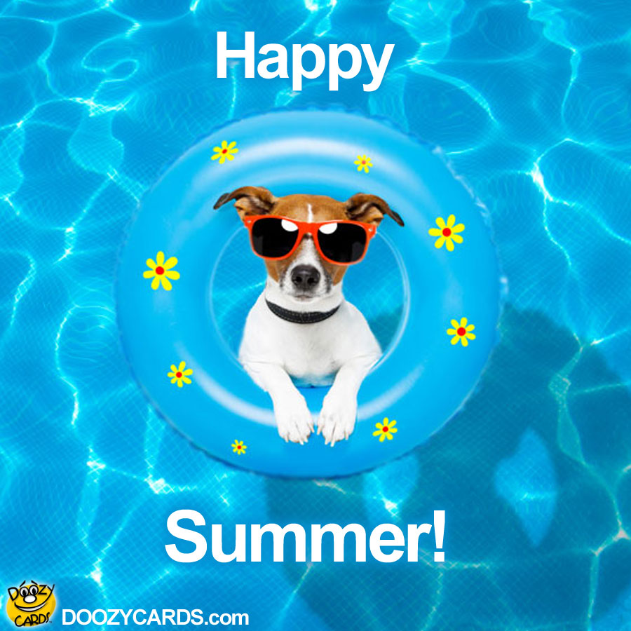 May The 4th Be With You Dog: Happy Summer, View The Popular Happy Summer ECard